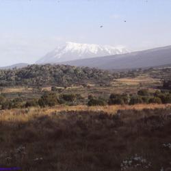 Premières vues sur le Kilimandjaro, Tanzanie