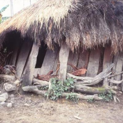 Habitat traditionnel, Papouasie